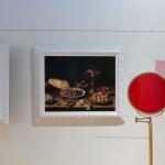 Napoleon's Wallpaper - Candace Hicks